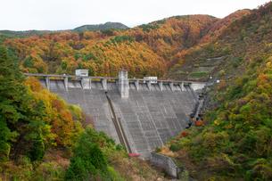 秋の箕輪ダムの写真素材 [FYI04124030]