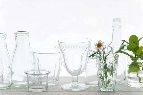 グラス集合の写真素材 [FYI04124415]