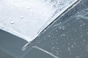雨に濡れたビニール傘の写真素材 [FYI04126339]