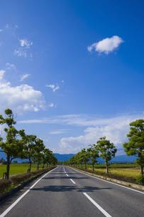 道路の写真素材 [FYI04126718]