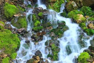 龍神の滝の写真素材 [FYI04126783]