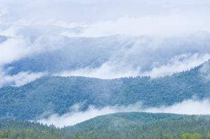 雨上がりの山の写真素材 [FYI04126904]