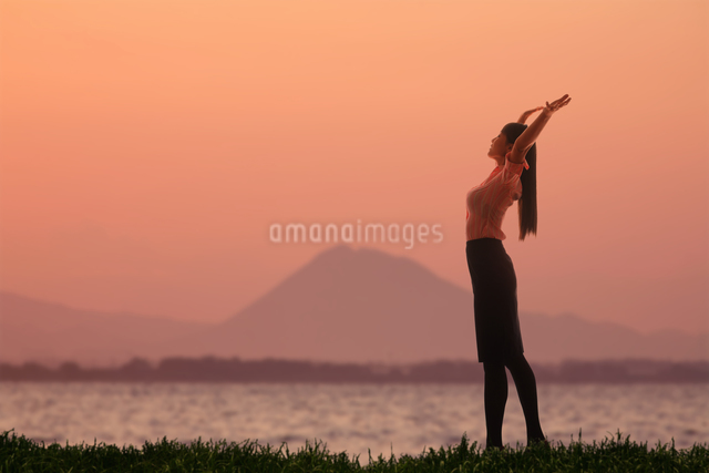 琵琶湖畔,三上山の写真素材 [FYI04126952]