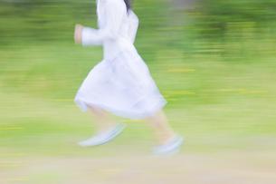 草原を駆けるの写真素材 [FYI04126978]