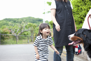 犬と遊ぶ女の子の写真素材 [FYI04128641]