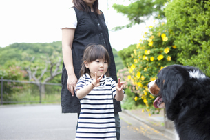 犬と遊ぶ女の子の写真素材 [FYI04128643]