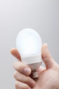 電球の写真素材 [FYI04129896]