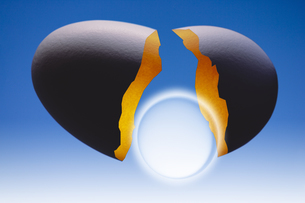 卵の殻とレンズの写真素材 [FYI04130049]