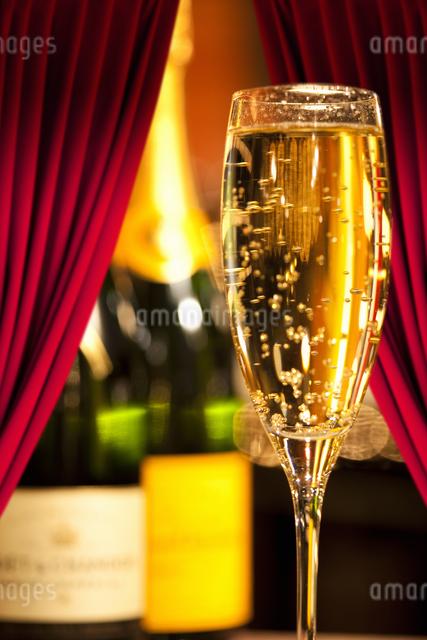 シャンパンの写真素材 [FYI04130527]