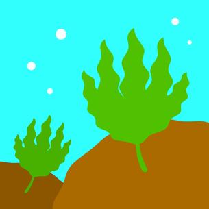 海藻のイラスト素材 [FYI04130768]