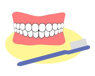 入れ歯と歯ブラシのイラスト素材 [FYI04131106]