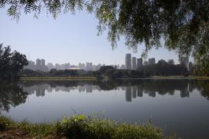 公園から望むサンパウロのビジネス街の写真素材 [FYI04131198]