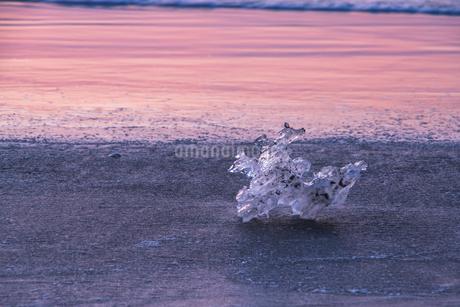 氷の騎士~ジュエリーアイス~の写真素材 [FYI04131207]