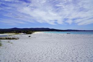 タスマニア州のセントへレンズ付近の白砂の海岸の写真素材 [FYI04131286]