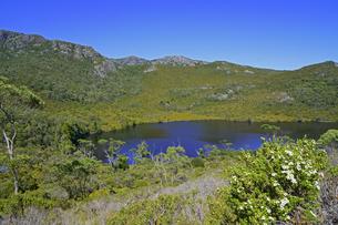 タスマニア州のクレイドルマウンテン国立公園のリラ湖と山並みの写真素材 [FYI04131459]