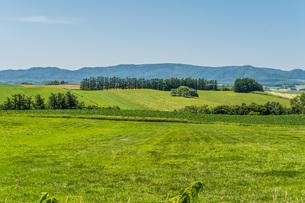 青空と山と緑の写真素材 [FYI04132725]