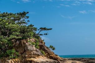 崖の向こうに広がる青空の写真素材 [FYI04132734]