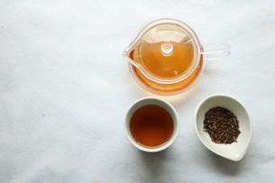 ほうじ茶の写真素材 [FYI04133490]