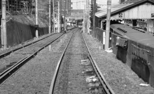 東急玉川線(玉電)・廃止まじかの風景の写真素材 [FYI04133971]
