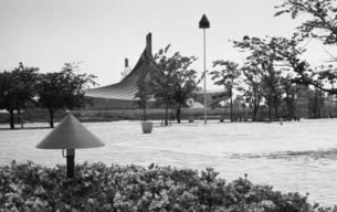 国立代々木競技場の写真素材 [FYI04134018]