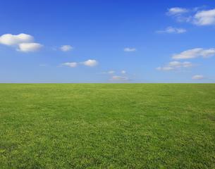ちぎれ雲と草原の写真素材 [FYI04134290]