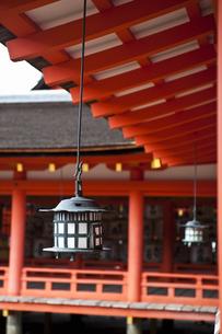 宮島の神殿の写真素材 [FYI04134808]