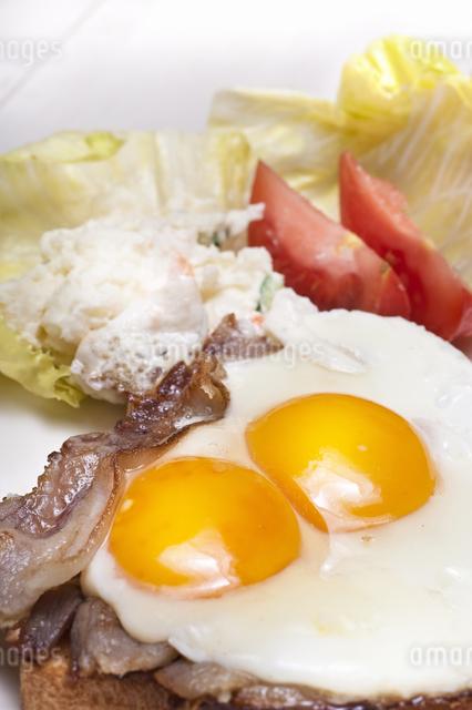 朝食の写真素材 [FYI04135219]
