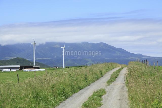 一本道と風力発電の写真素材 [FYI04135569]