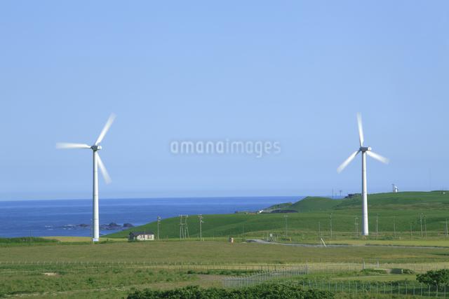 風力発電用風車の写真素材 [FYI04135606]