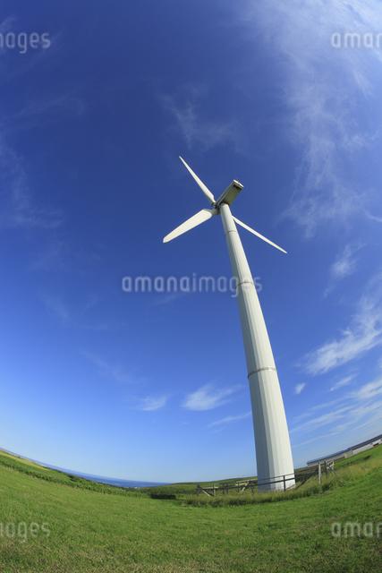 風力発電用風車の写真素材 [FYI04135613]