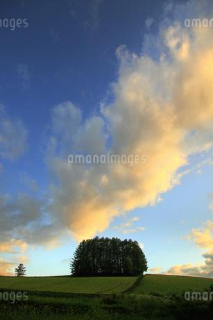 丘の風景の写真素材 [FYI04135710]