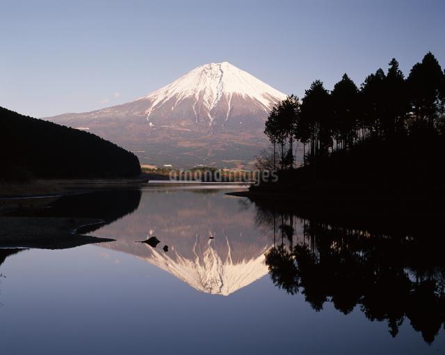 逆さ富士の写真素材 [FYI04135746]