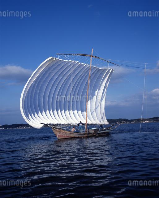 霞ヶ浦 帆引き船の写真素材 [FYI04135759]