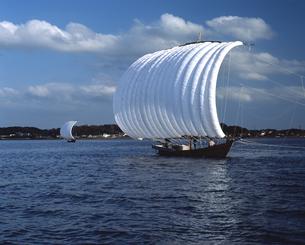 霞ヶ浦 帆引き船の写真素材 [FYI04135760]