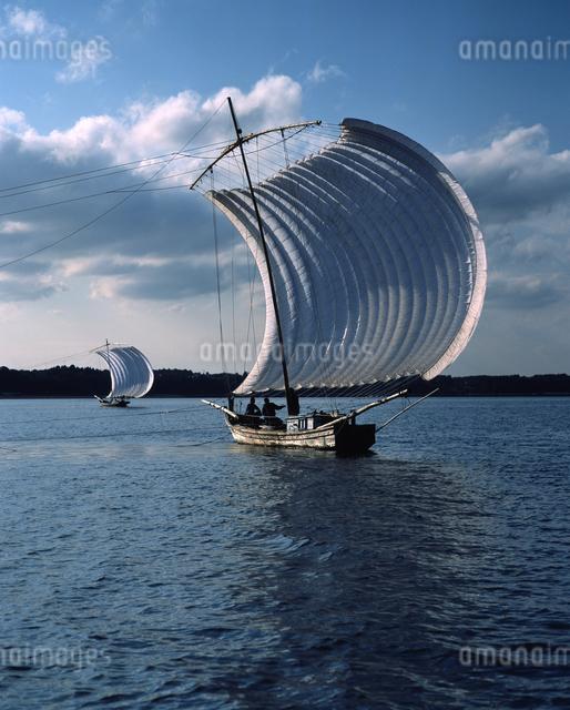 霞ヶ浦 帆引き船の写真素材 [FYI04135762]
