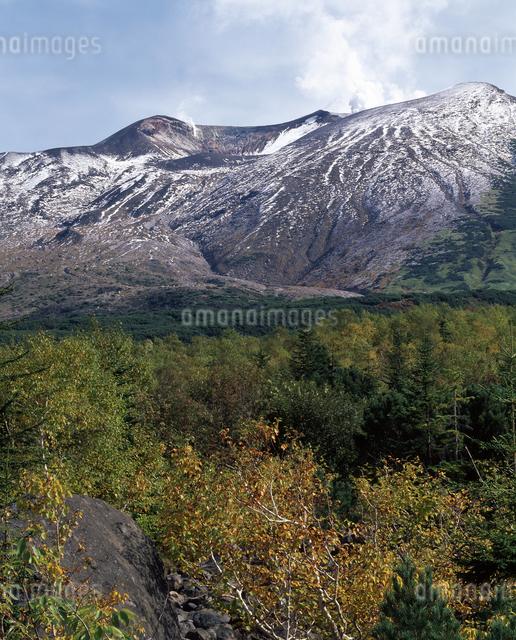 新雪の十勝岳の写真素材 [FYI04135788]