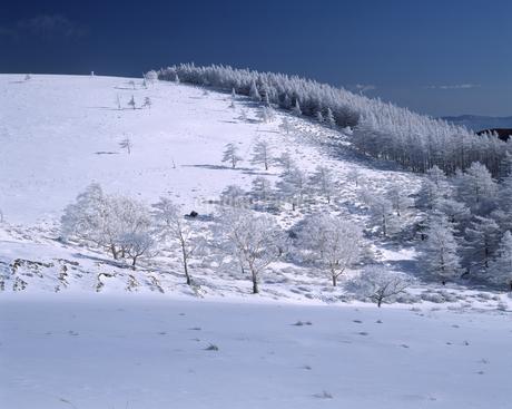 冬の美ヶ原高原の写真素材 [FYI04135851]