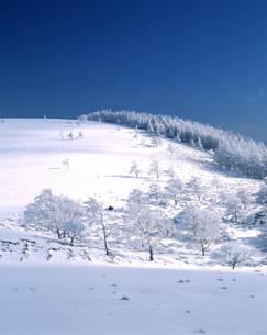 冬の美ヶ原高原の写真素材 [FYI04135852]