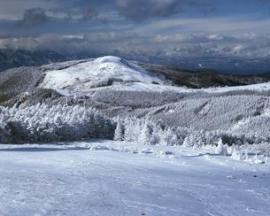 冬の美ヶ原高原の写真素材 [FYI04135956]
