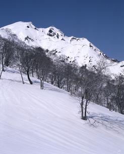 早春の谷川岳の写真素材 [FYI04135997]