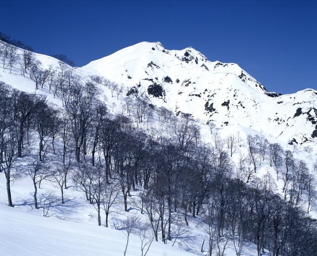 早春の谷川岳の写真素材 [FYI04135998]