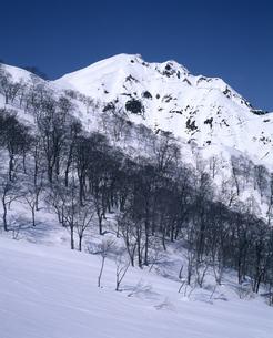 早春の谷川岳の写真素材 [FYI04136000]