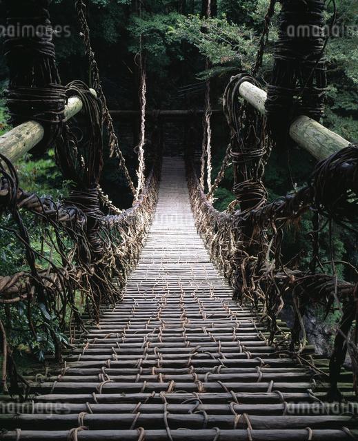 祖谷のかずら橋の写真素材 [FYI04136101]