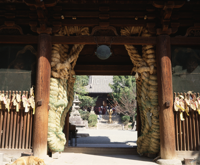 仁王門(国宝)の写真素材 [FYI04136157]