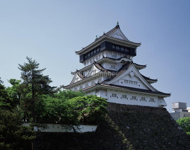小倉城の写真素材 [FYI04136177]