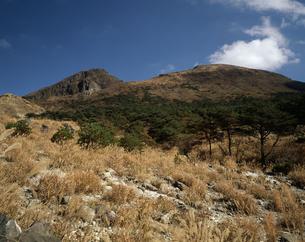 韓国岳の写真素材 [FYI04136216]