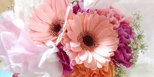 花の写真素材 [FYI04136236]