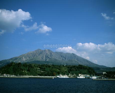 桜島の写真素材 [FYI04136319]