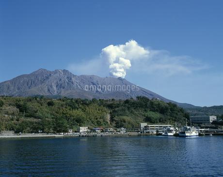 桜島の写真素材 [FYI04136321]