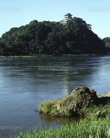 木曽川と犬山城(国宝)の写真素材 [FYI04136330]